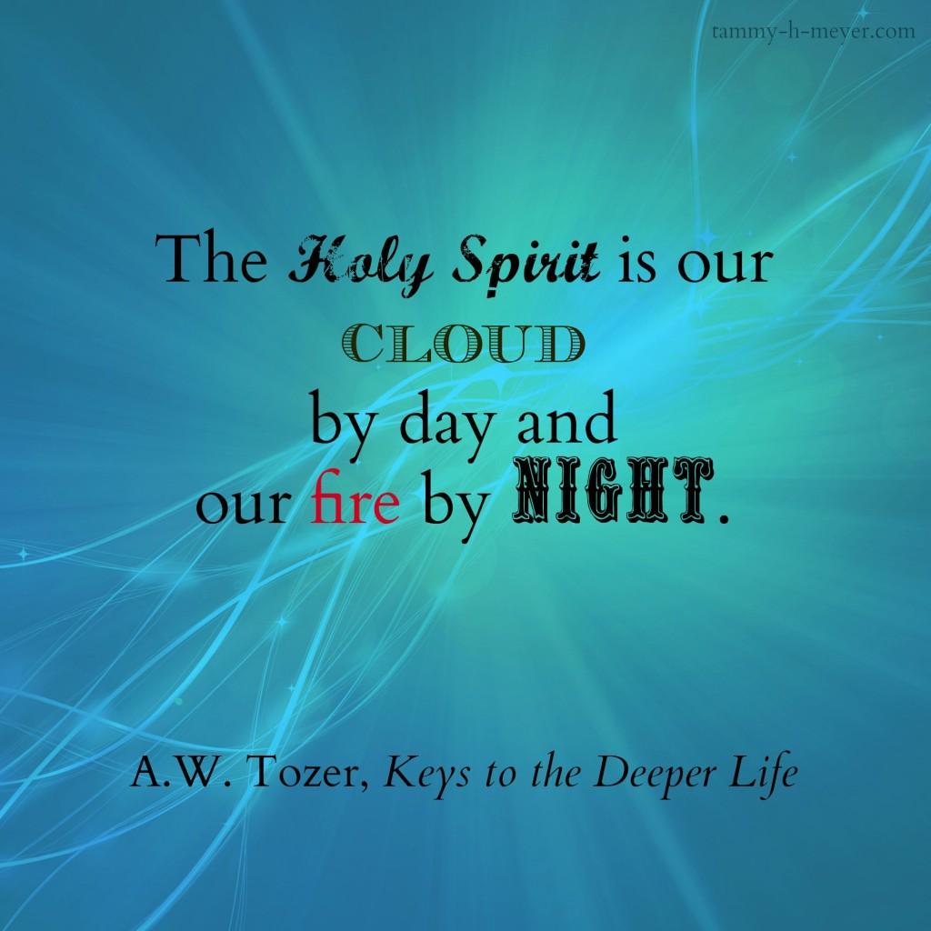spirit our fire tozer