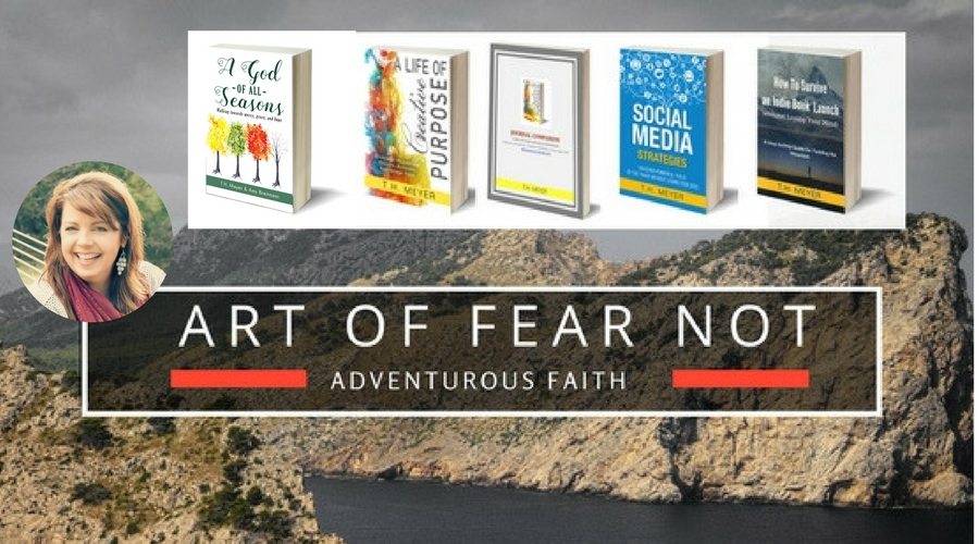 TH Meyer, Art of Fear Not: An Adventurous Faith, author of A Life ot Creative Purpose & A God of All Seasons