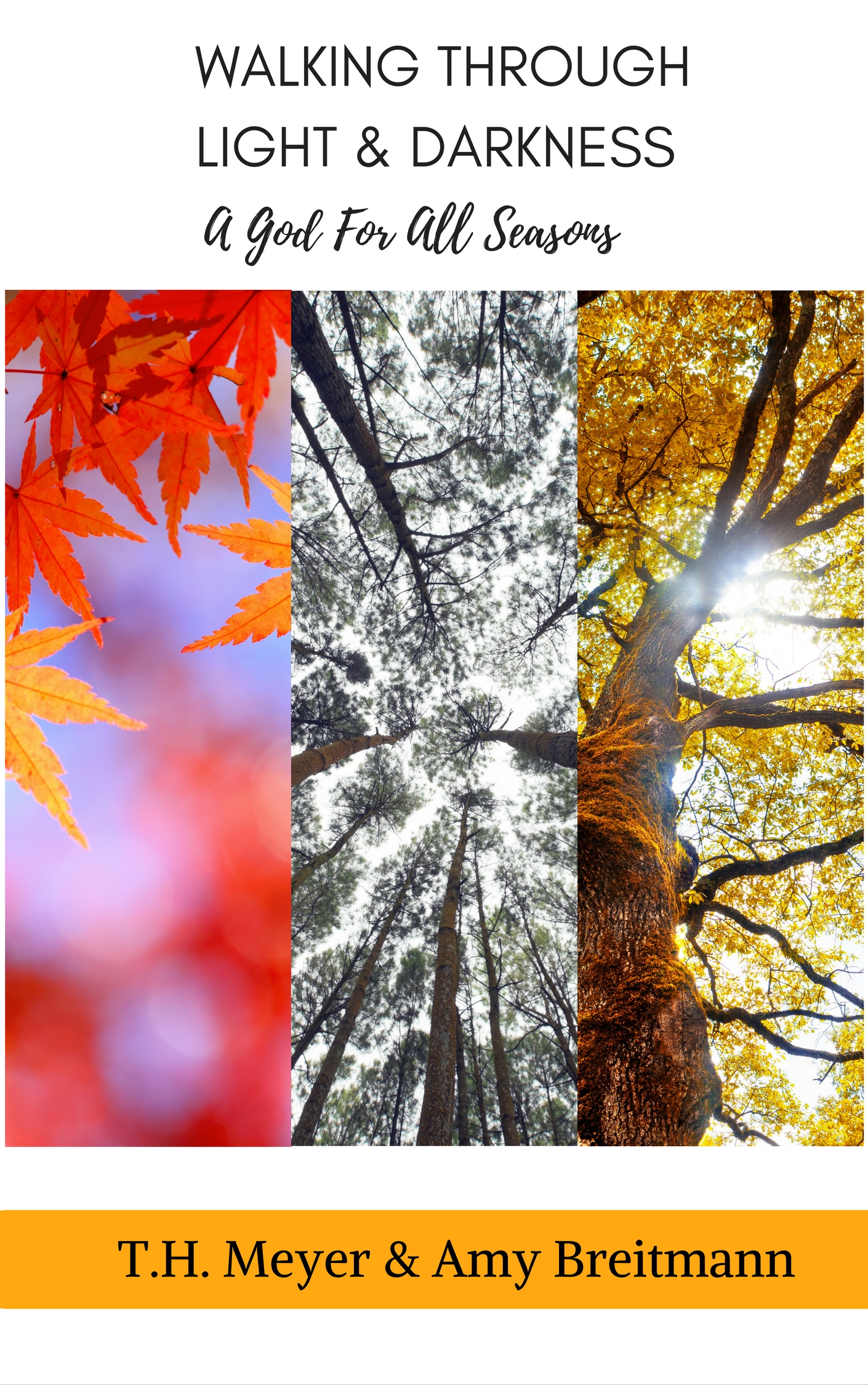Upcoming book, A God for All Seasons by T.H. Meyer and Amy Breitmann