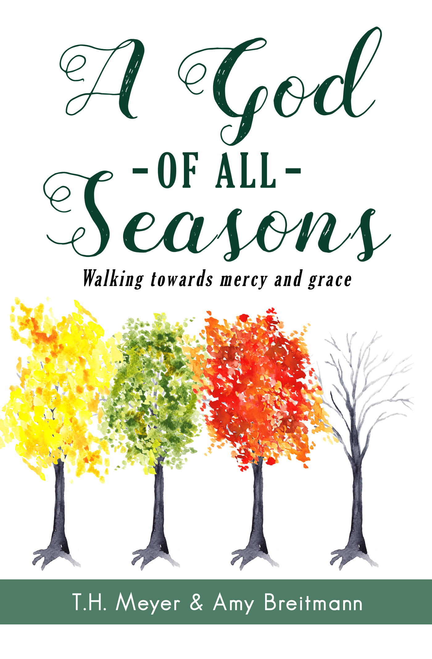 A God For All Seasons, Walking Towards Mercy, Grace & Hope by TH Meyer & Amy Breitmann