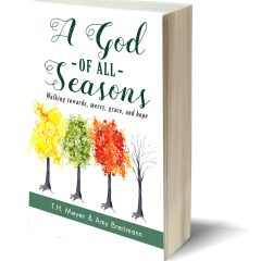 A God of All Seasons by TH Meyer & Amy Breitmann