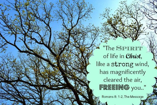 Spirit of life in Christ