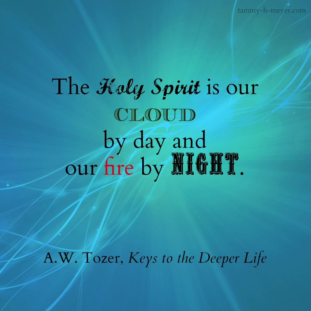 spirit our fire tozer