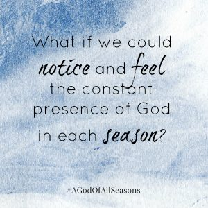 Discover the beauty and challenge of spiritual seasons as Tammy & Amy remember parts of their stories in order to draw out your own. Learn to perceive God's companionship even when you don't sense His nearness. And unearth, not only a God who created the seasons, but one who also walks with you through them. A God of All Seasons: Walking Towarads Mercy, Grace, & Hope by TH Meyer & Amy Breitmann